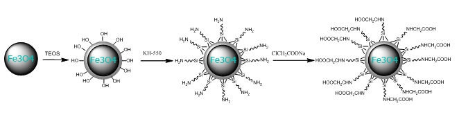 Carboxyl functionalized magnetic silica beads