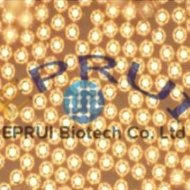conductive Au particle